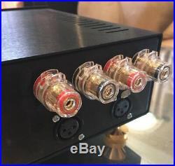 NEW GEN2 DESIGN! Hypex Ncore NC502MP DUAL 500W HIFI Amp